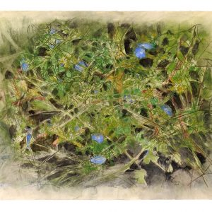 Flores azules, tréboles y pastos, 2009. Carbón, acuarela y temple de cera, 56 x 76 cm