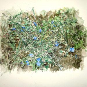 Flores azules y tierra, 2009. Carbón, acuarela y temple de cera, 56 x 76 cm