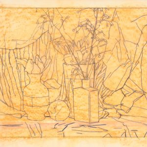 Ciruela y 2 frascos, 2003. Grafito, 56 x 76 cm