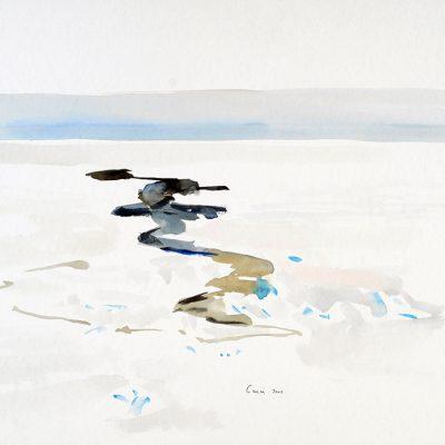 1-2-2006, Hielo de agua, Día 30, 2006. Acuarela, 45 x 56 cm