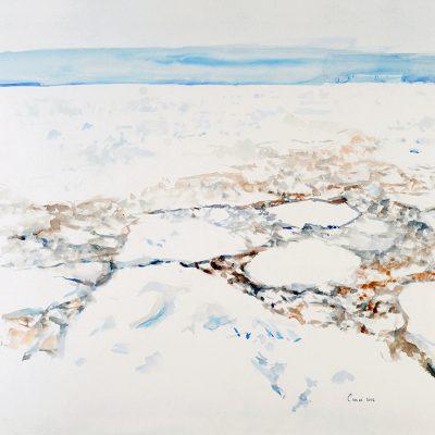 12-1-2006, Hielo de más de un año. Diatomeas. Día 10, 2006. Acuarela, 56 x 76 cm