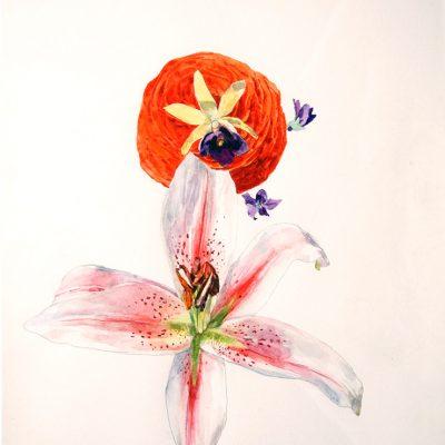 Marimonia, Orquidea, Violetas y Lilium