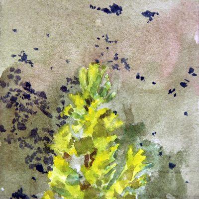Árbol y sierra, 2017. Acuarela, 10 x 10 cm