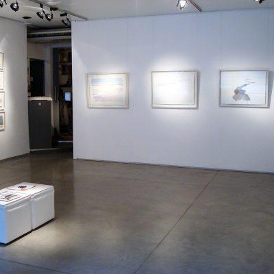 Detrás del círculo polar, RO Galería de Arte, 2008