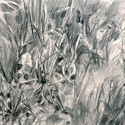 Composición Nro. 6, 2004. Carbón, 40 x 50 cm