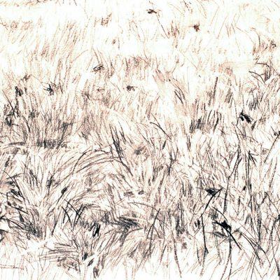 Composición nº 4, 2004. Carbonilla, 35 x 45 cm