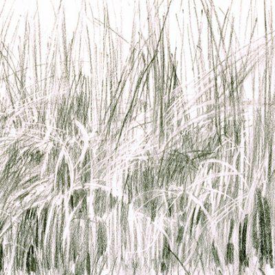 Composición Nro. 26, 2004. Carbón 2004, 50 x 70 cm