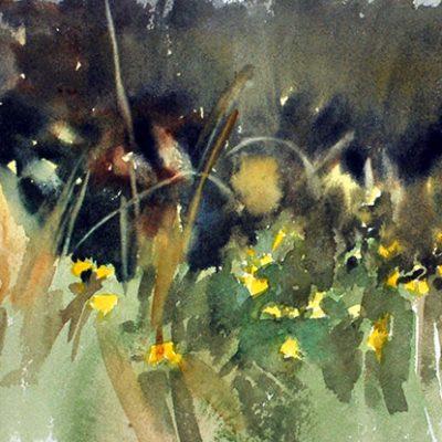Tandil, pino y flores, 2009. Acuarela, 31 x 41 cm