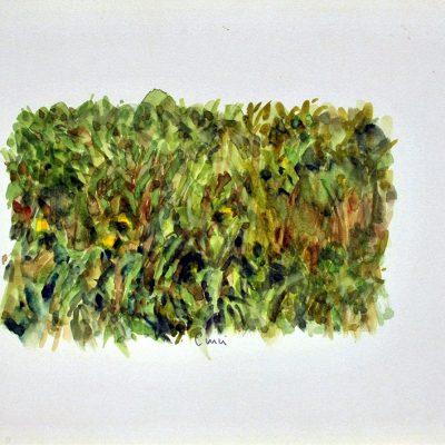 Chalten, 2007. Acuarela, 25 x 35 cm
