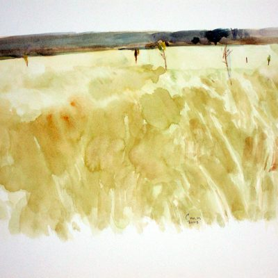 Pastizal con panaderos, 2003. Acuarela, 24 x 32 cm