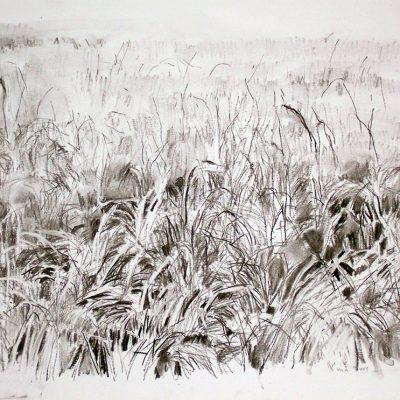 Composición nº 2, 2004. Carbón, 40 x 54 cm