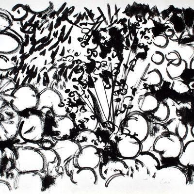 Semillas tinta 4, 2006. Tinta, 42 x 56 cm