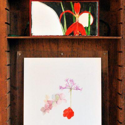 Paisaje II, 2018. Cajón de tipos de imprenta, 66 x 36 cm / Una acuarela de botánica, Libro rojo y Jupiter